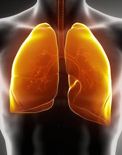 One cup of this Drink will Clean your Lungs naturally