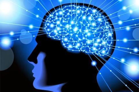 Sering Dianggap Remeh Ternyata 4 Kebiasaan Ini Tanda Otak Kamu Cerdas Lho