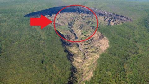 Penemuan Lubang Raksasa Di Tengah Hutan, Tak Disangka Fakta Mengejutkan Ini Terungkap!