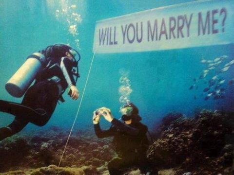 The Most Incredible Marriage Proposals You'll Ever See