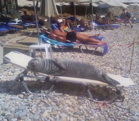 8 People Who Found Unforgettable Things on The Beach