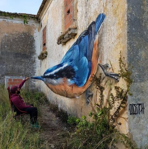 Amazing Street Arts That'll Blow your Mind